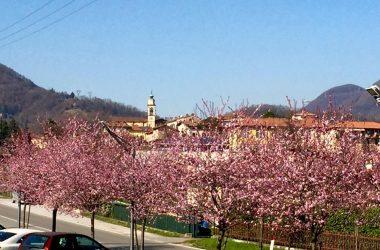Almenno San Bartolomeo Valle Imagna Bergamo